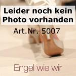 (Art.Nr. 5007) Festzelttisch (50) – 2,20 x 50 cm, Platte Kiefer lackiert