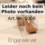(Art.Nr. 5008) Festzelttisch (70) – 2,20 x 70 cm, Platte Kiefer lackiert